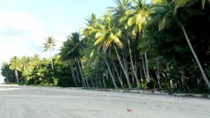 Beach_in_Port_Douglas_3